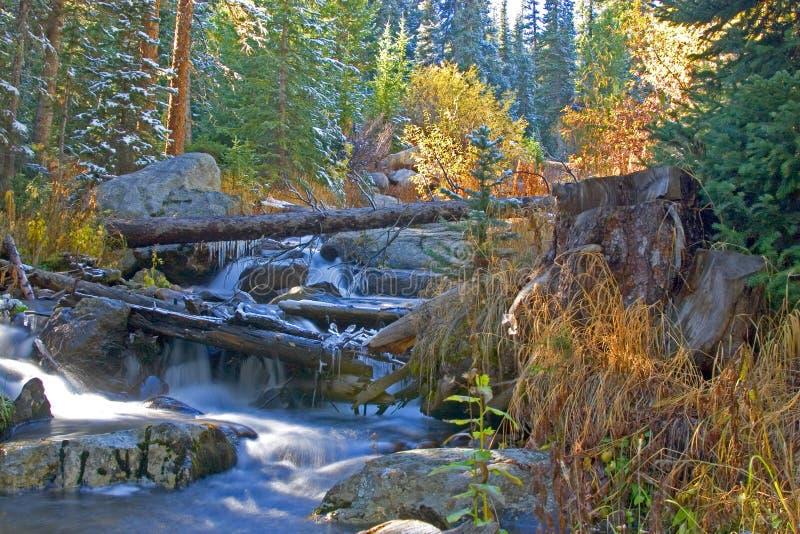 Neve in autunno immagini stock libere da diritti