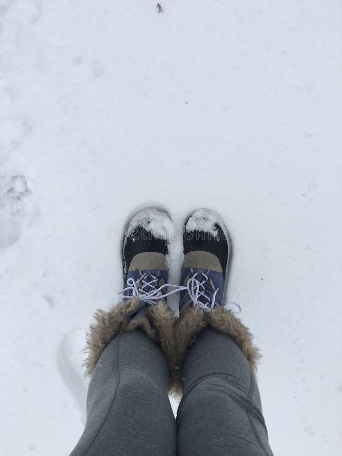 Neve caída fresca foto de stock