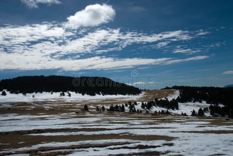 Neve che si fonde nelle piste di sci di fondo fotografia stock libera da diritti