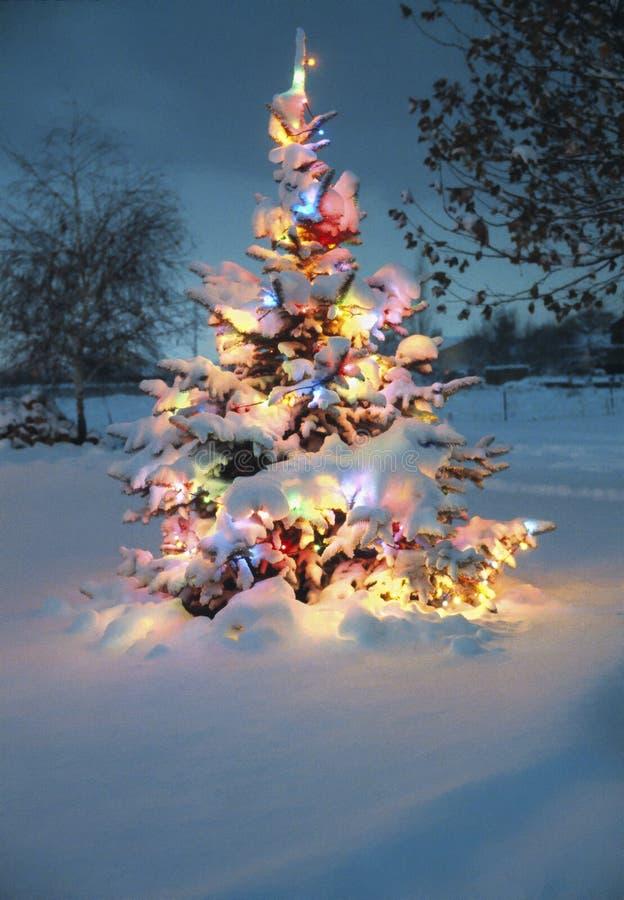 A neve cobriu a árvore de Natal