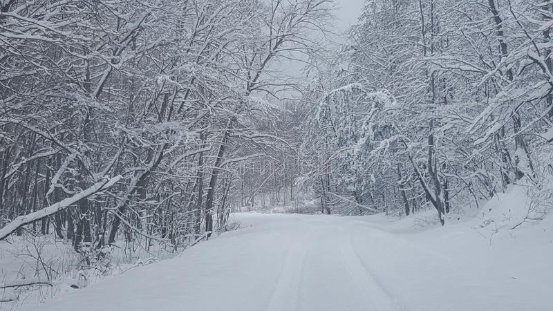 Download A neve cobriu a estrada foto de stock. Imagem de fuga - 65580522