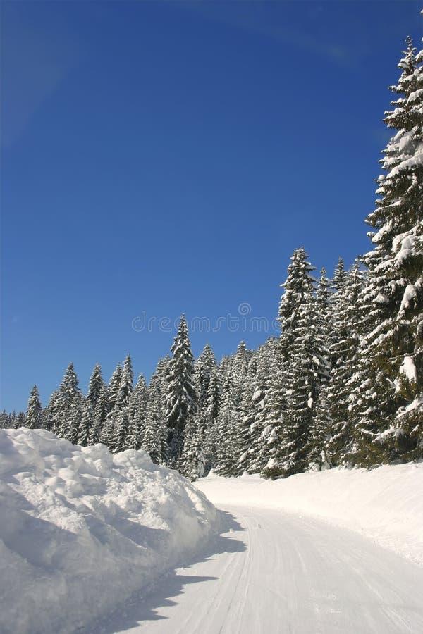 A neve cobriu a estrada no inverno fotos de stock