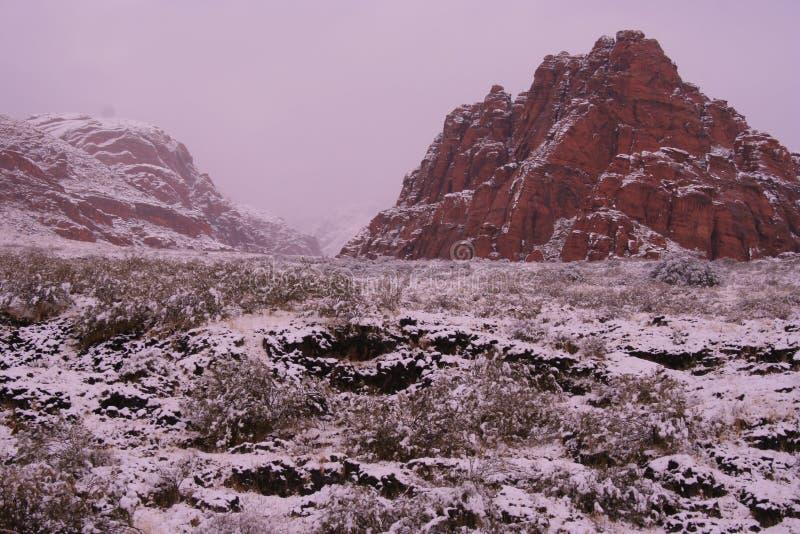 A neve cobriu a rocha do vermelho do deserto imagem de stock royalty free