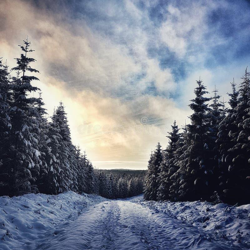 neve da estrada do inverno foto de stock