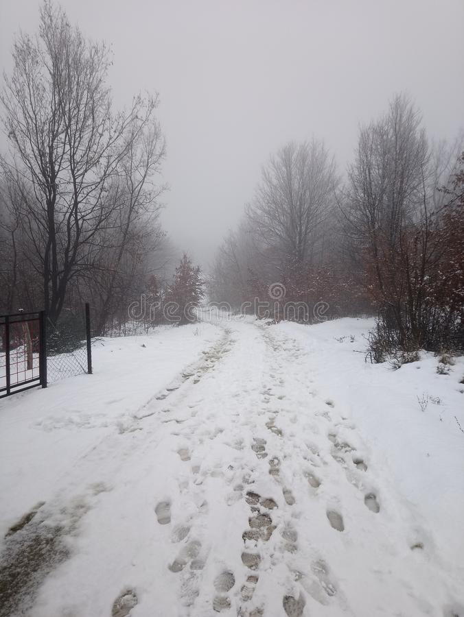 Neve da montanha do snowpath do trajeto da estrada foto de stock