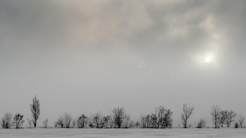 Neve da paisagem do inverno na terra e árvores sem as folhas contra o céu escuro e o sol fotos de stock