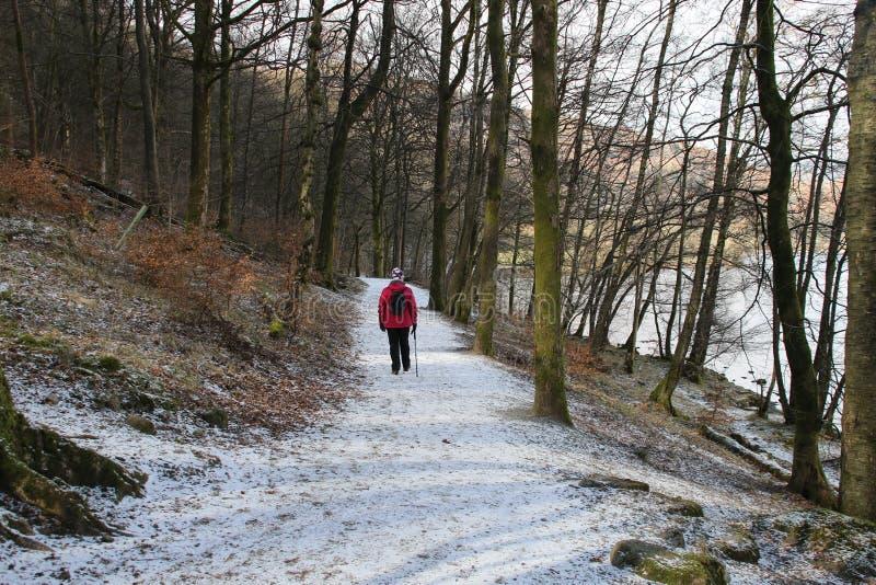 Neve de Inglaterra do curso do distrito do lago fotografia de stock royalty free