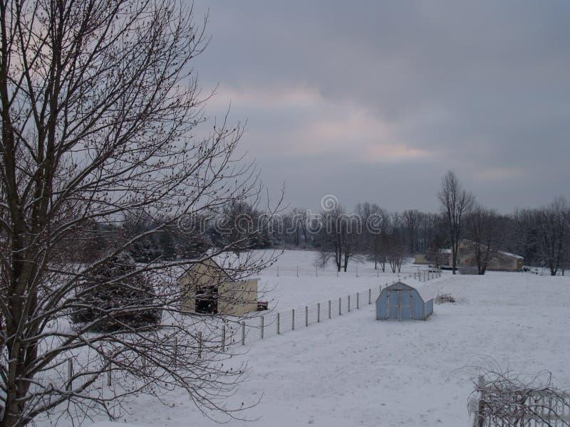Neve de janeiro foto de stock royalty free