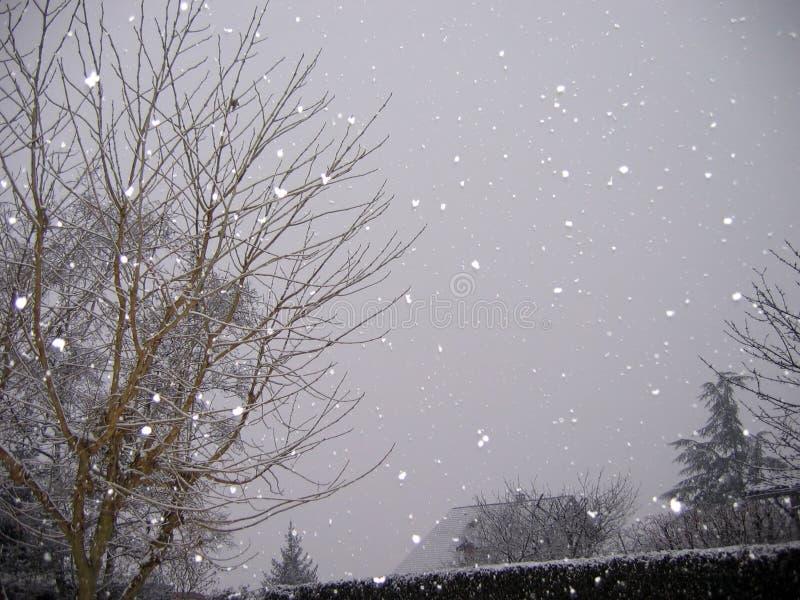 Neve de queda imagens de stock royalty free