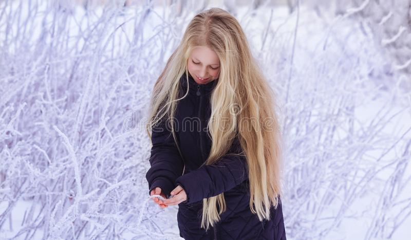 Neve de sopro da menina do inverno Beleza Girl modelo adolescente alegre que tem o divertimento no parque do inverno Menina bonit imagens de stock royalty free