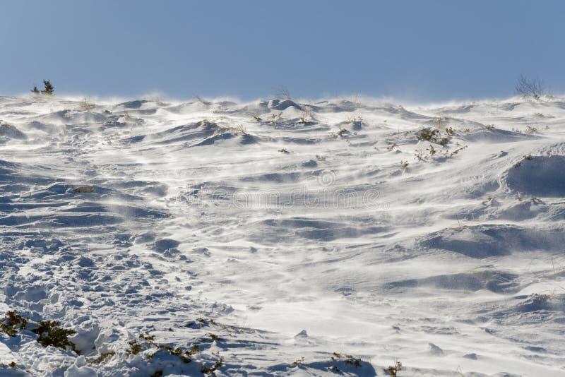 Neve de sopro na montanha imagem de stock