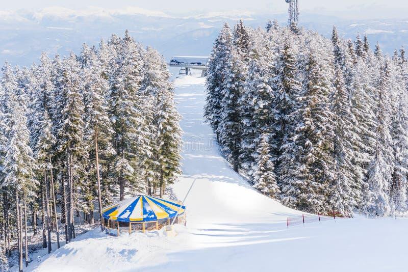 Neve della foresta della montagna del paesaggio di inverno immagine stock