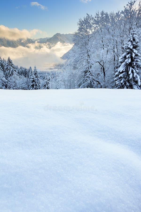Neve della polvere in Vorarlberg Austria fotografia stock libera da diritti