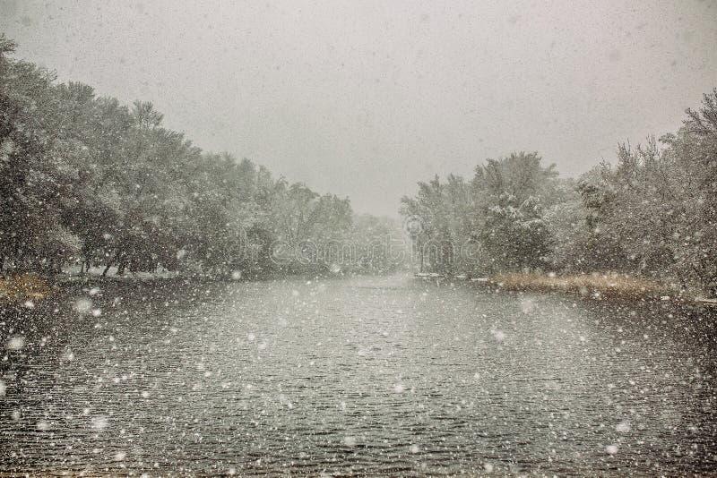 Neve della primavera fotografie stock