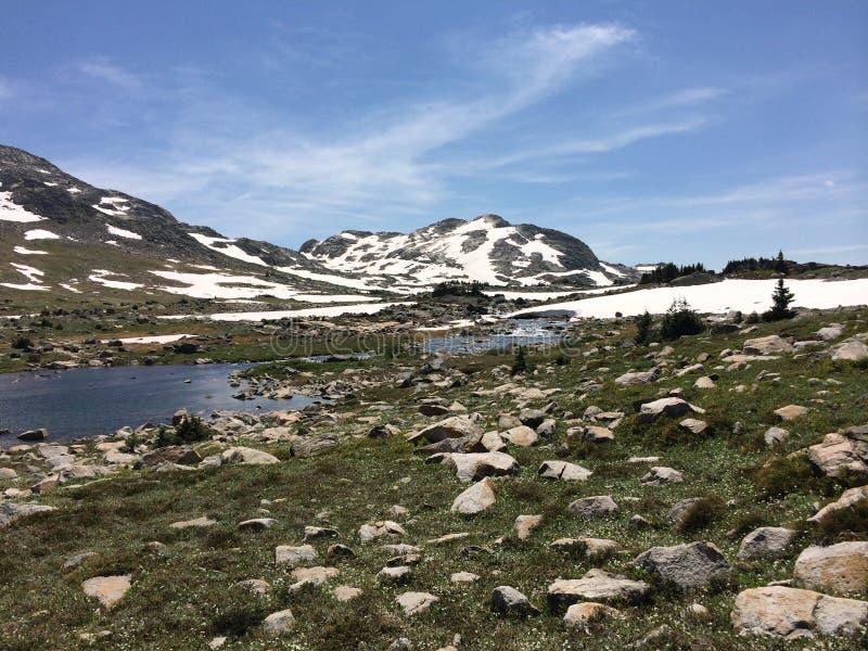 Neve di altitudine fotografia stock