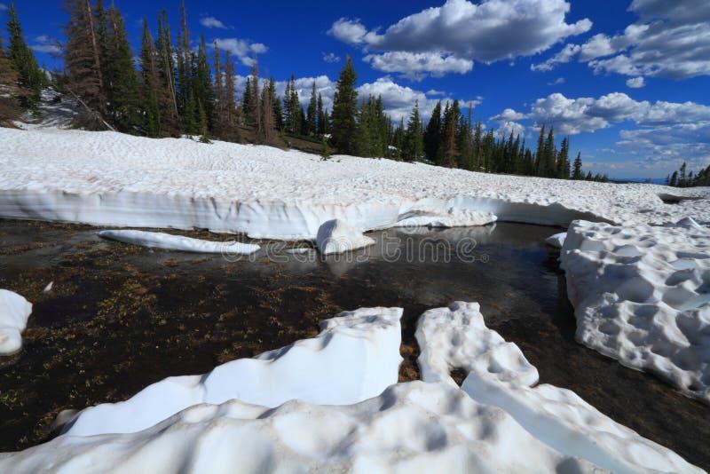Neve di fusione nelle montagne immagine stock libera da diritti