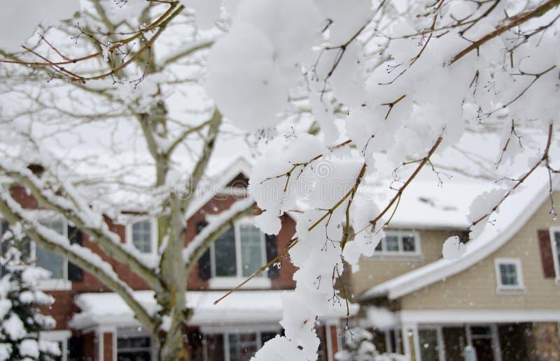 Neve di fusione in sobborgo di Seattle fotografie stock libere da diritti