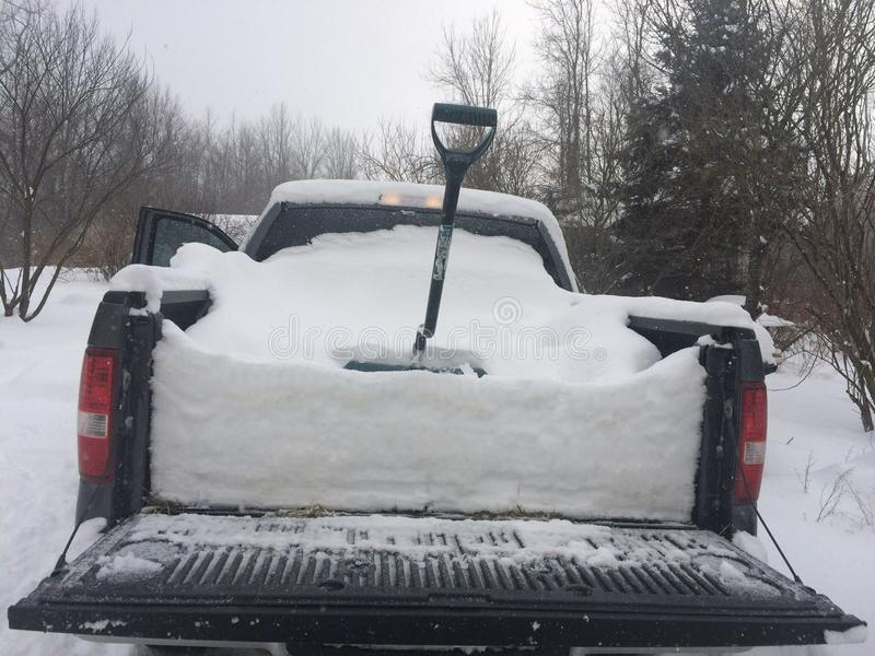 Neve di inverno immagine stock
