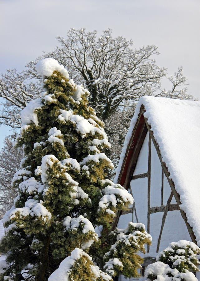 Neve di inverno e del cottage irradiata quercia immagine stock