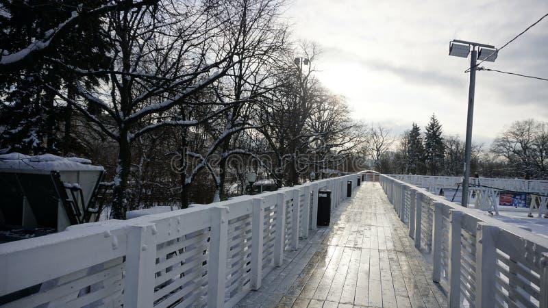 Neve di inverno nel parco di Gorkij immagine stock libera da diritti