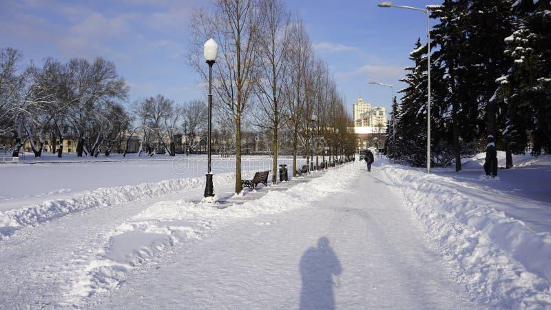 Neve di inverno nel parco di Gorkij immagini stock