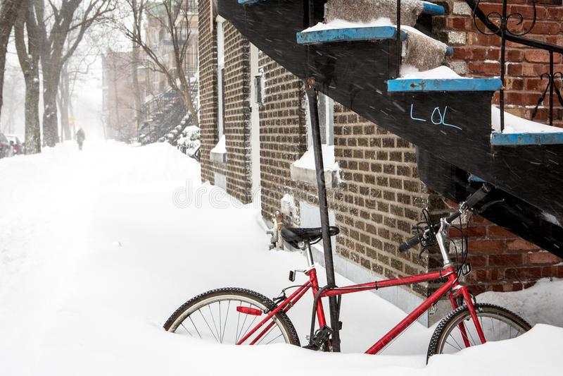 Neve di risata immagine stock