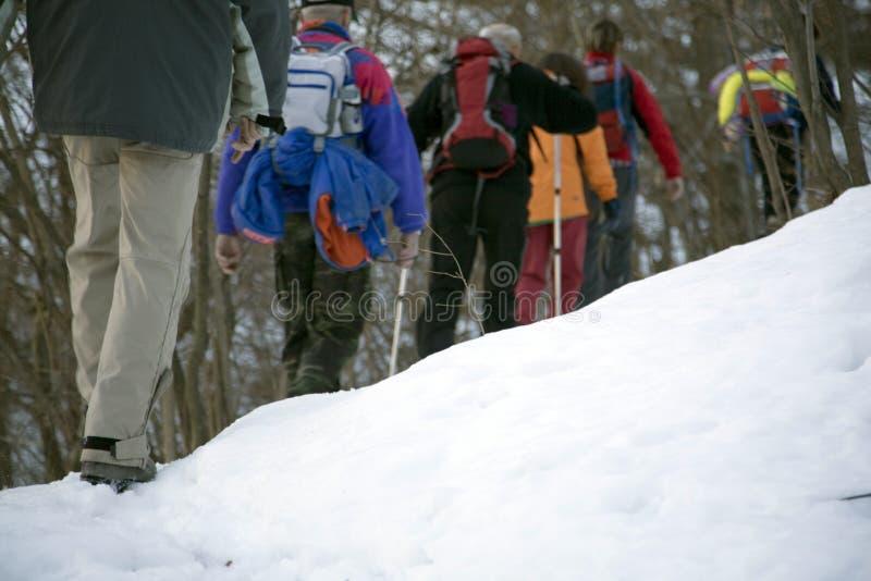 Neve do inverno fotos de stock royalty free