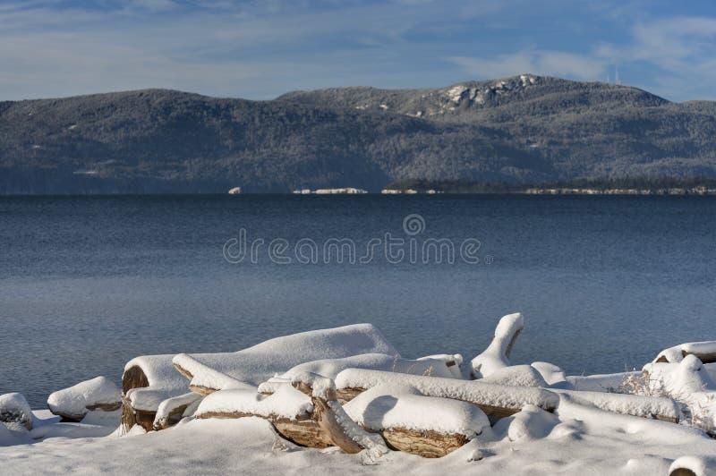 Neve do inverno na madeira lançada à costa fotos de stock royalty free