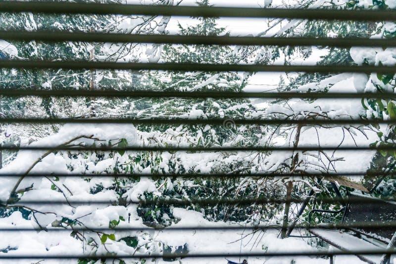 Neve e Blindes fotografia stock libera da diritti