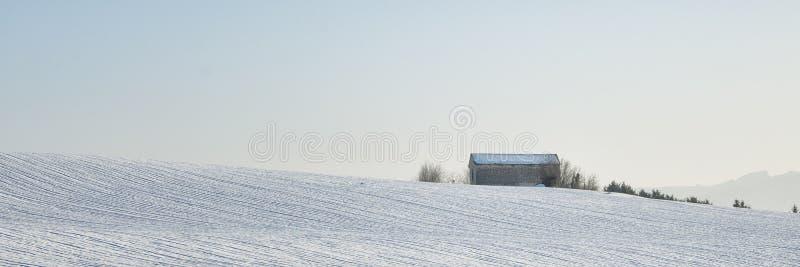 Neve e cielo blu con le nubi ed il bastone immagine stock