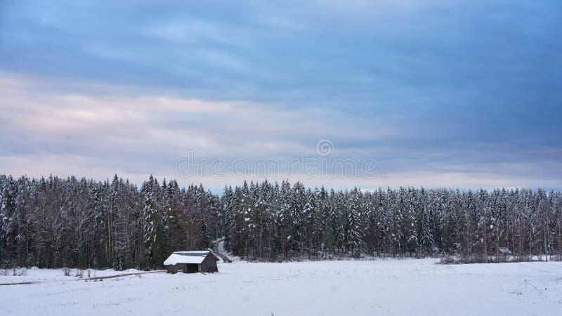Neve e cielo blu con le nubi ed il bastone fotografia stock