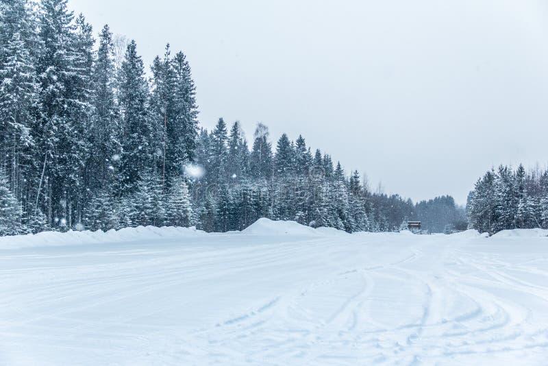 Neve e gelo de Car?lia bonita fotos de stock royalty free