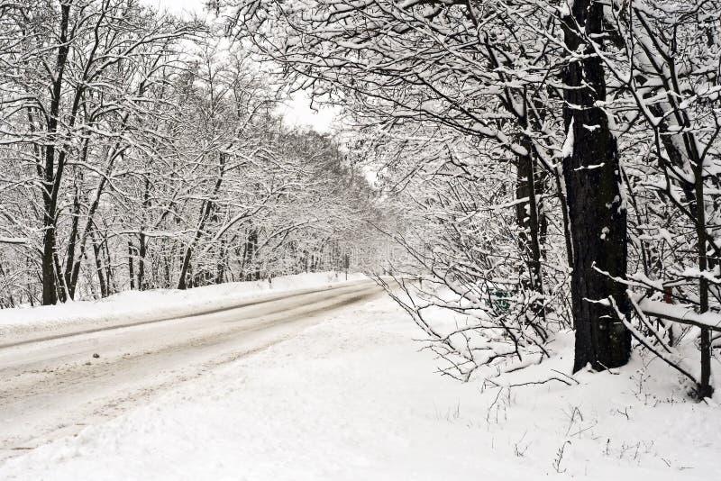 Download Neve e inverno imagem de stock. Imagem de freeze, paisagem - 12806957
