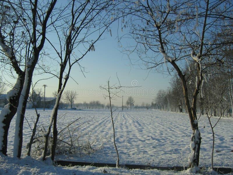 neve e nuvole immagine stock libera da diritti