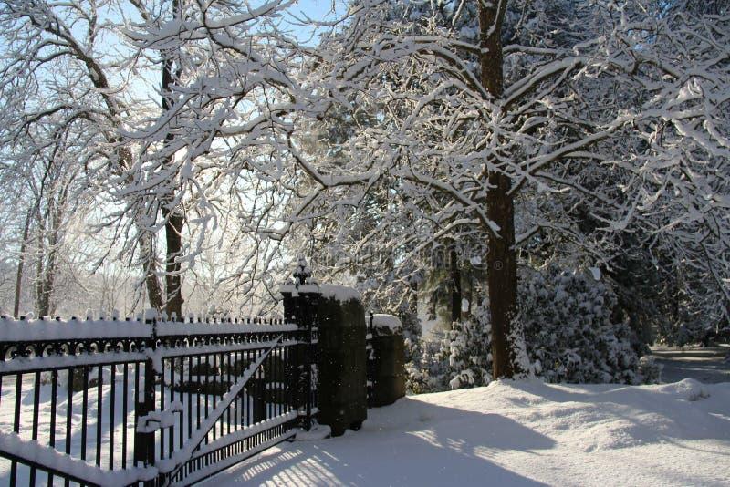 Neve em toda parte fotografia de stock royalty free