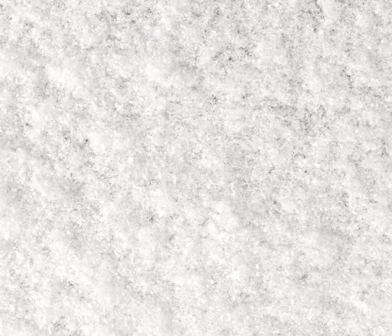 Neve fresca imagem de stock