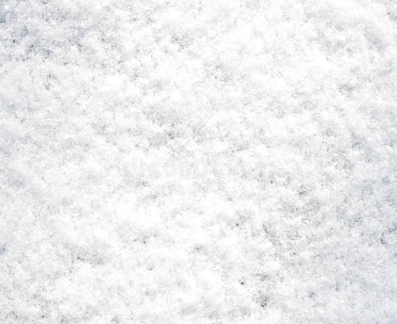 Neve fresca imagem de stock royalty free