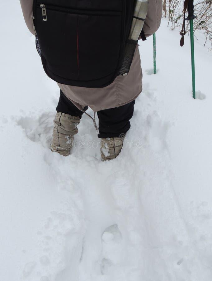 Neve fresca, profunda nas montanhas imagens de stock royalty free