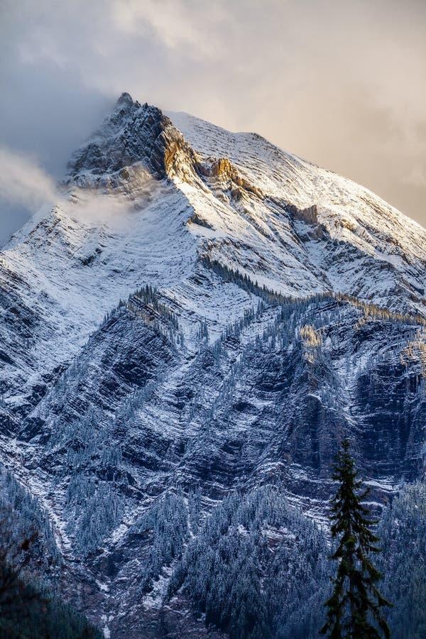 Neve fresca su un picco di montagna nelle Montagne Rocciose canadesi, C britannica fotografia stock libera da diritti
