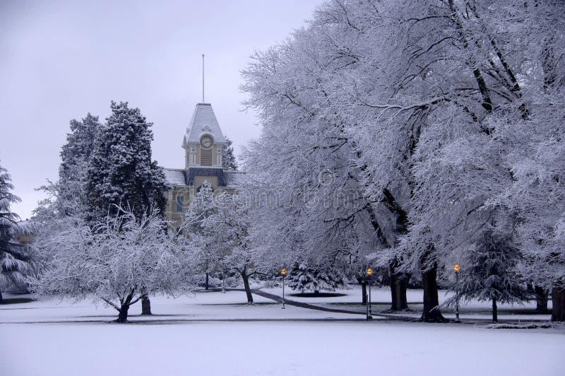 Neve fresca sulla città universitaria immagine stock