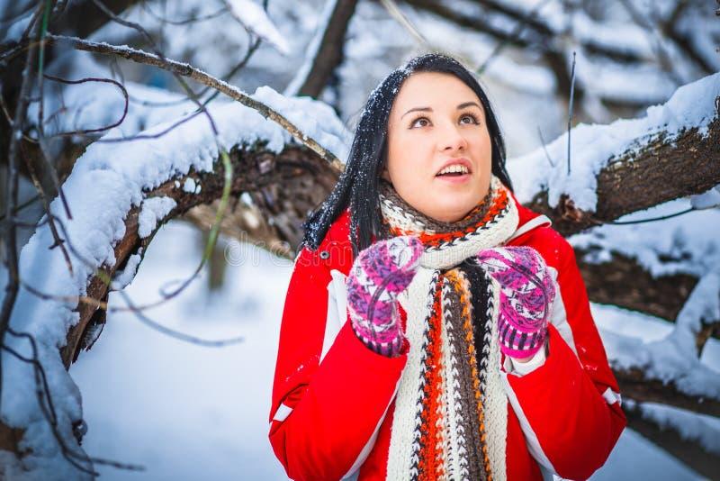 Neve, menina, retrato imagem de stock