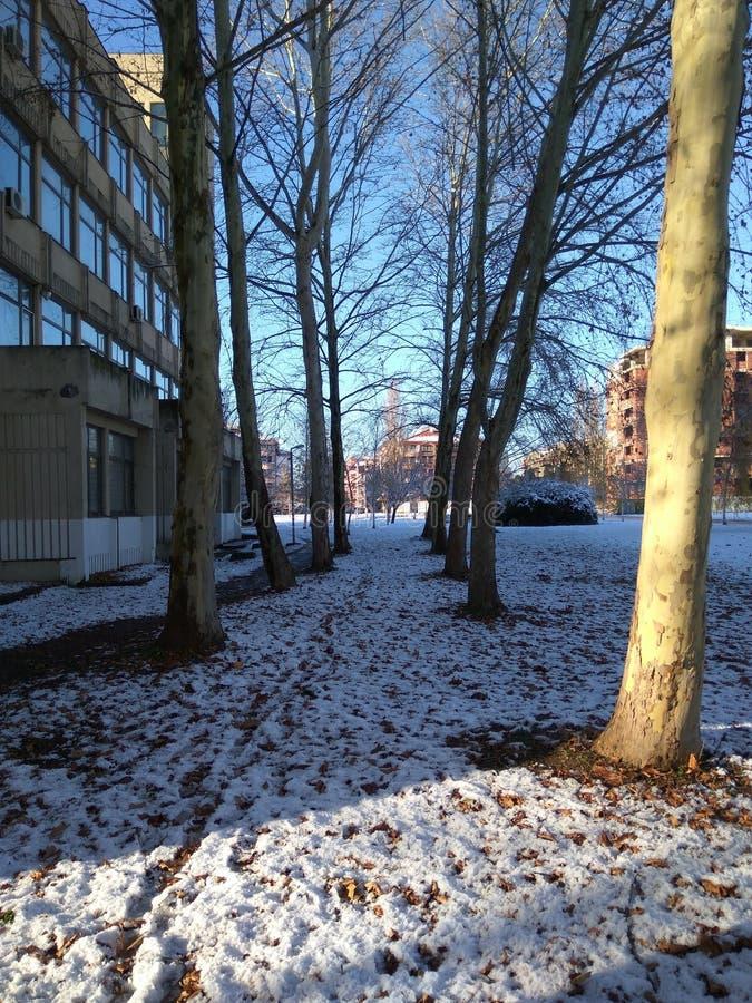 Neve na vizinhança imagens de stock royalty free