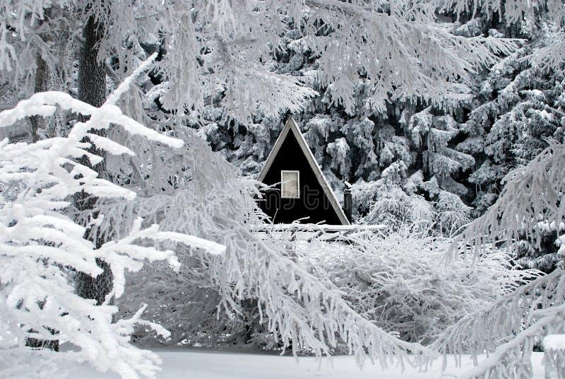 Neve nell'orario invernale immagine stock libera da diritti