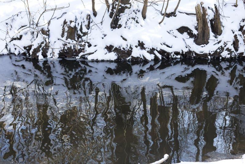 Neve no dia de inverno feliz ensolarado brilhante do parque As árvores são refletidas na superfície da água fotos de stock royalty free