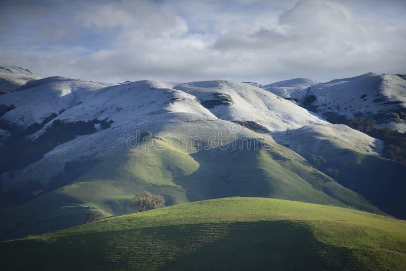Neve rara na inclinação do Mt Hamilton na mola adiantada fotos de stock royalty free