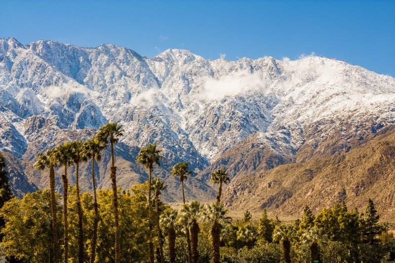 Neve su San Jacinto fotografia stock libera da diritti