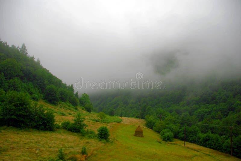 Nevel in bergen stock foto