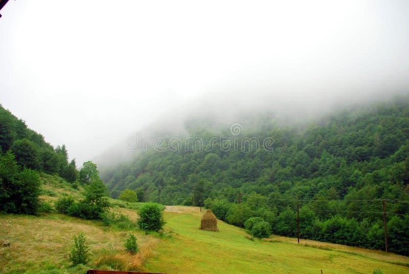 Nevel in bergen royalty-vrije stock foto's