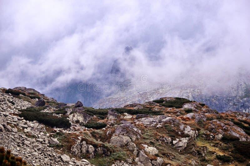 Nevelig dromerig landschap Diepe nevelige vallei in het parkhoogtepunt van de herfstslowakije van zware wolken van dichte mist royalty-vrije stock afbeelding