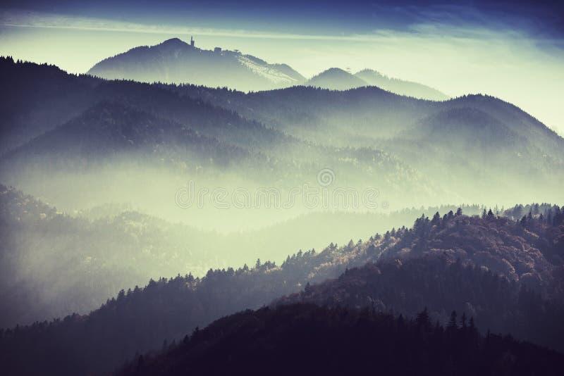 Nevelig landschap stock afbeelding
